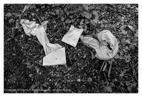 BW photograph of a pair of soiled panties with some soiled napkins laying near the head of a hiking trail.