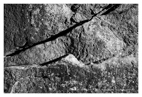 BW photograph of a crack in the rocks at Devil's Den.
