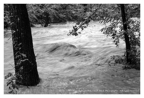 BW photograph of turbulence caused by floodwaters flowing over rocks and around trees.