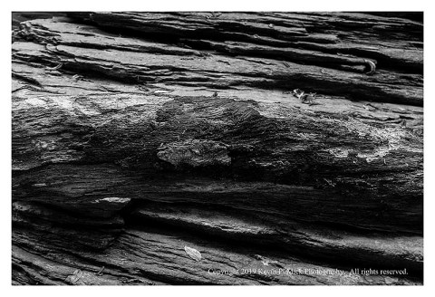 BW photograph of a log laying in front of a large rock.