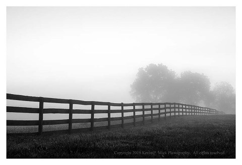 BW photograph of a rail fence leading to background trees on a foggy morning.