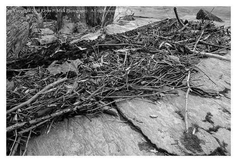 BW photograph of debris collected against some rocks after a hard rain.