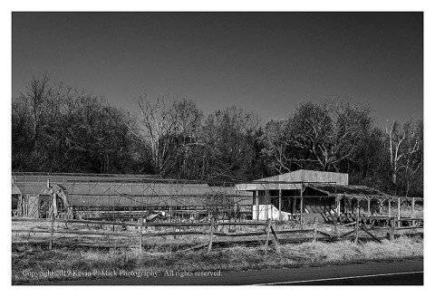 BW photograph of the greenhouses and main building of an abandoned nursery.