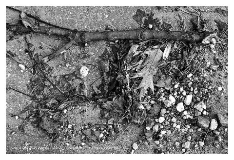 BW photograph of debris on a walkway after a flooding.