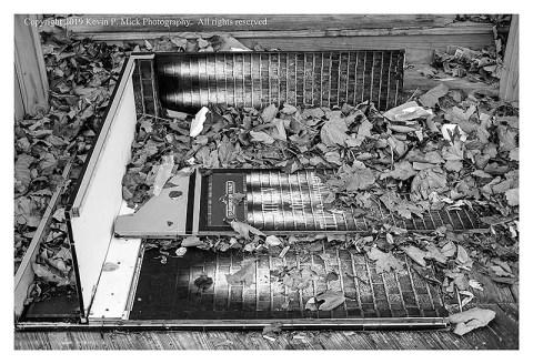 BW photograph of a downed sign laying amid some leaves.