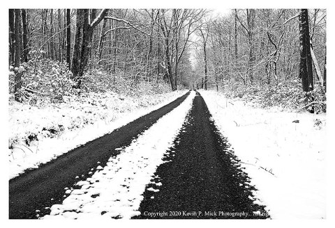 BW photograph of a snowy road in the woods leading into the distance.