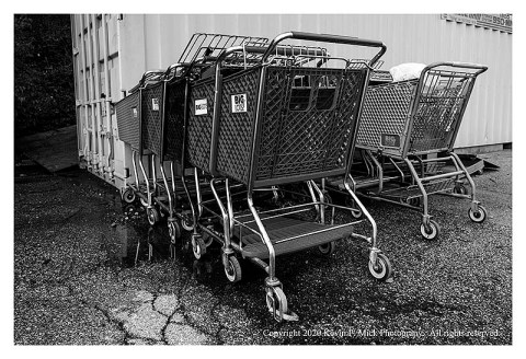 BW photograph of a number of shopping carts pushed together in at the edge of a parking lot.