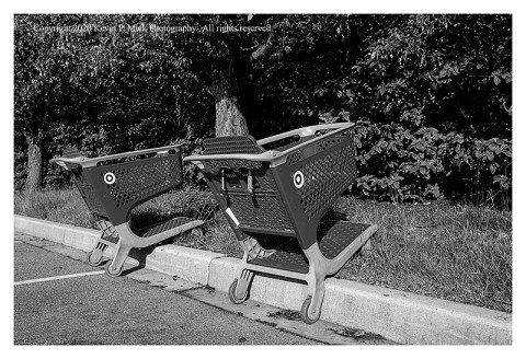BW photograph of two shopping carts parked on a curb.