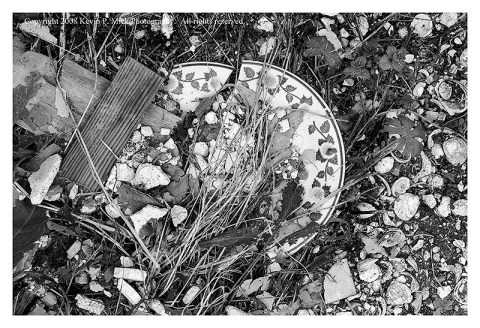 BW photograph of a broken plate alying amid grasses three years after Hurricane Katrina.