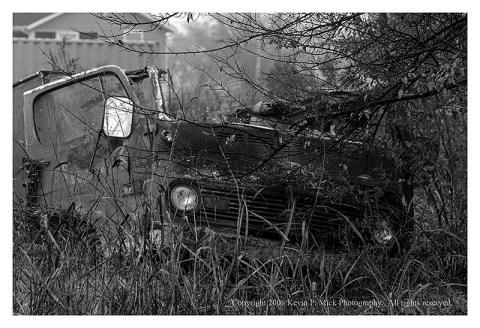 BW photograph of a destroyed van amid tall grasses three years after Hurricane Katrina.
