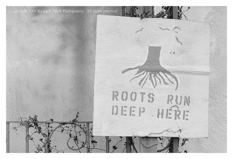 """BW photograph of a """"Roots Run Deep Here"""" sign in the 9th Ward three years after Hurricane Katrina."""