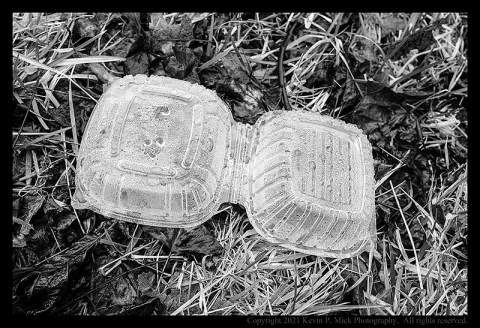 BW photograph of a clamshell packaging laying in the grass.