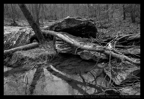 BW photograph of trees wrapped around large rocks after a flooding event.