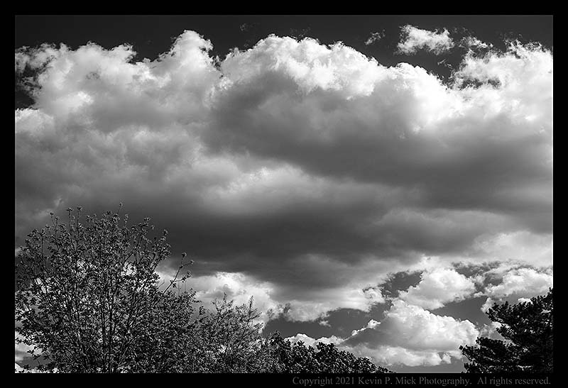 BW photograph of large cumulous clouds over some trees.