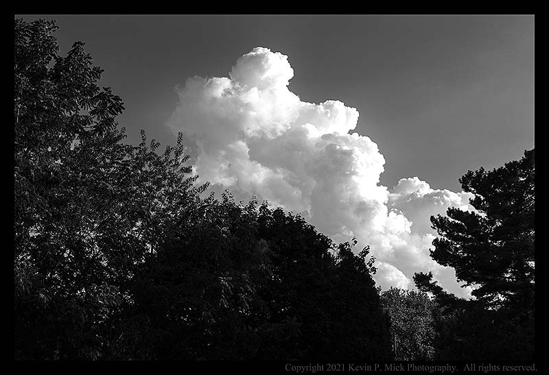 BW photograph of a cumulus cloud forming.