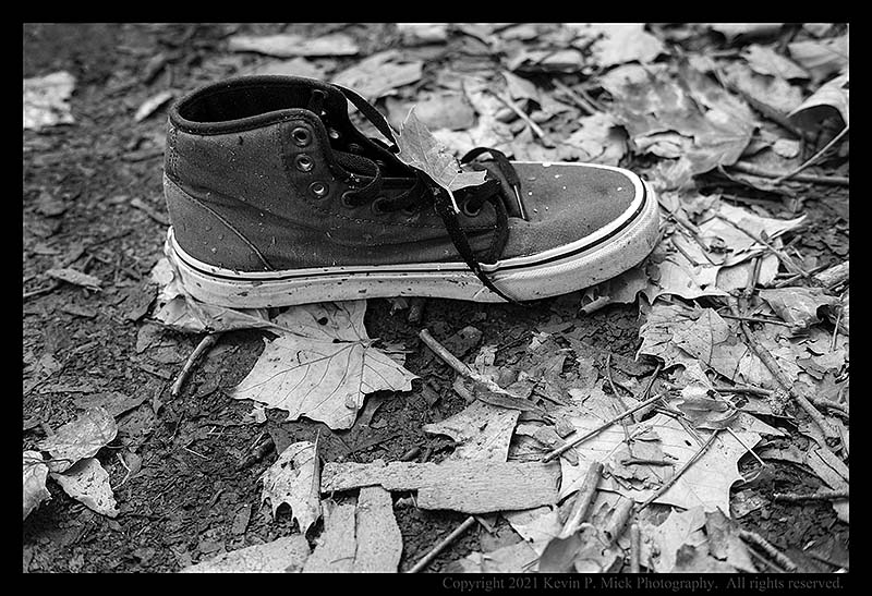BW photograph of an abandoned shoe in some leaves.